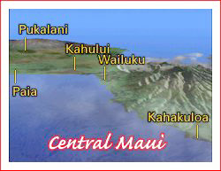 central maui map
