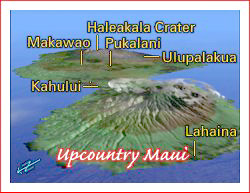 upcountry maui map